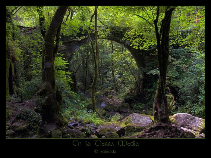 01_en_la_tierra_media