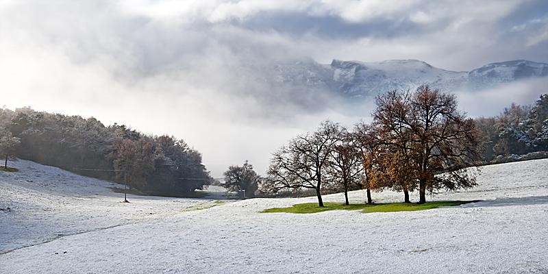 Nieve_sobre_los_prados