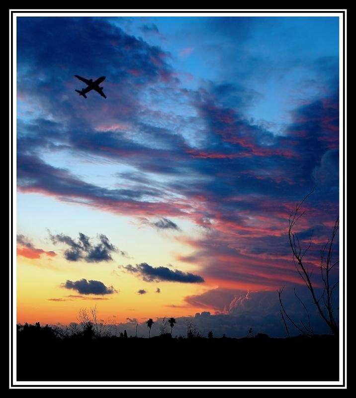 al_vuelo_enfoca