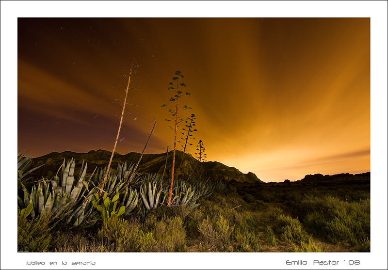 jubilo_en_la_serran_a_-nocturna