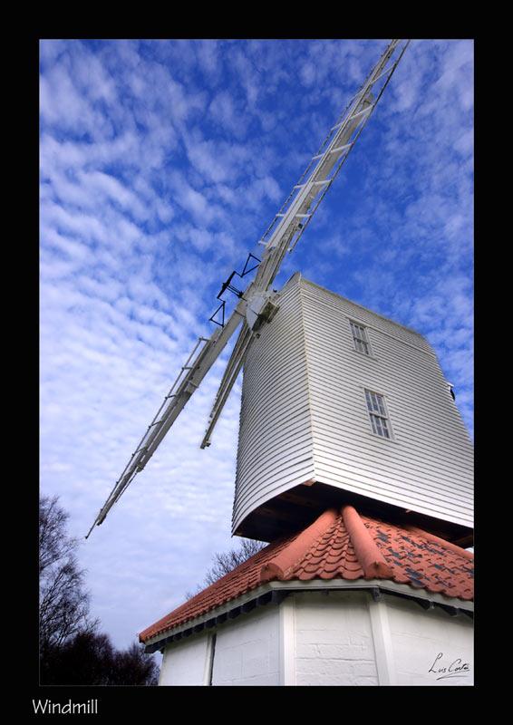 windmill-800