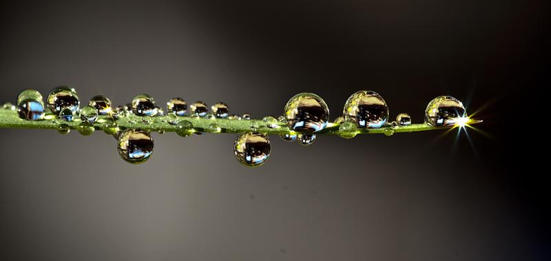 Perlas_de_agua
