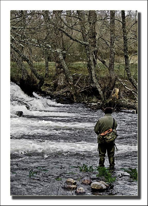Pescador_del_rio_Tera_2
